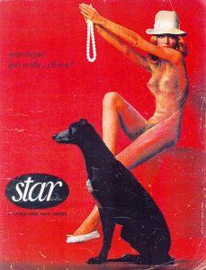 Luis Pita | Intervenciones | Interventions | serie «Lencería y accesorios para esclavas del hogar» (1990) | Sostén Star | series «Lingerie and accessories for household slaves» | Brassiere Star