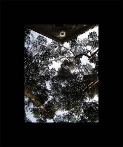 Luis Pita | Series Fotográficas | Photographical series | Paisajes españoles | Spanish Landscapes | (2008) Caos