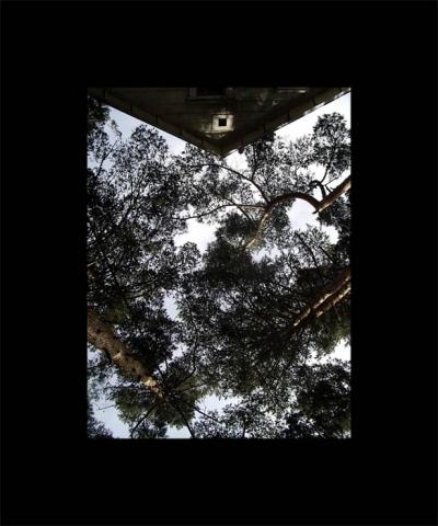 Luis Pita | Series Fotográficas | Photographical series | Paisajes españoles | Spanish Landscapes | Caos (2008) | Chaos