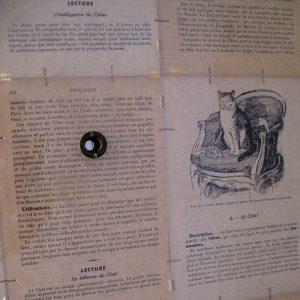 Luis Pita   Montajes tridimensionales   3-Dimensional Assemblies   biombo (fragmento con las mirillas) (fragment of the peepholes)