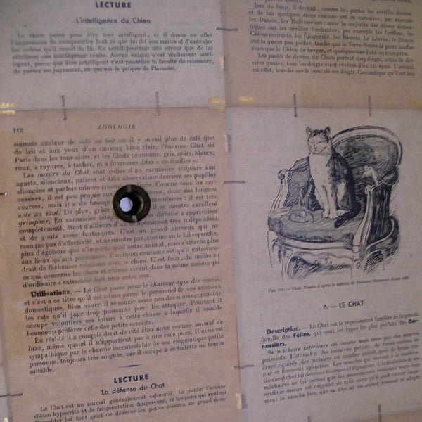Luis Pita | Montajes tridimensionales | 3-Dimensional Assemblies | biombo (fragmento con las mirillas) (fragment of the peepholes)