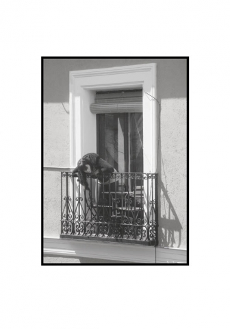 Luis Pita | Fotografía en Blanco y Negro | Black and White Photography | serie Balcones de Madrid | Balconies from Madrid series | Erik Stuborn | Cameradada | Neighbors | People watching life go | Gente mirando la vida pasar | Downtown Madrid | Malasaña Lavapies Districts | Luis Pita (2014) - Balcones - 05