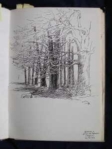 Luis Pita | Cuaderno de Apuntes de Viajes | Travel Sketchbooks | 002/ Pinos de Valsaín - Segovia (1993)