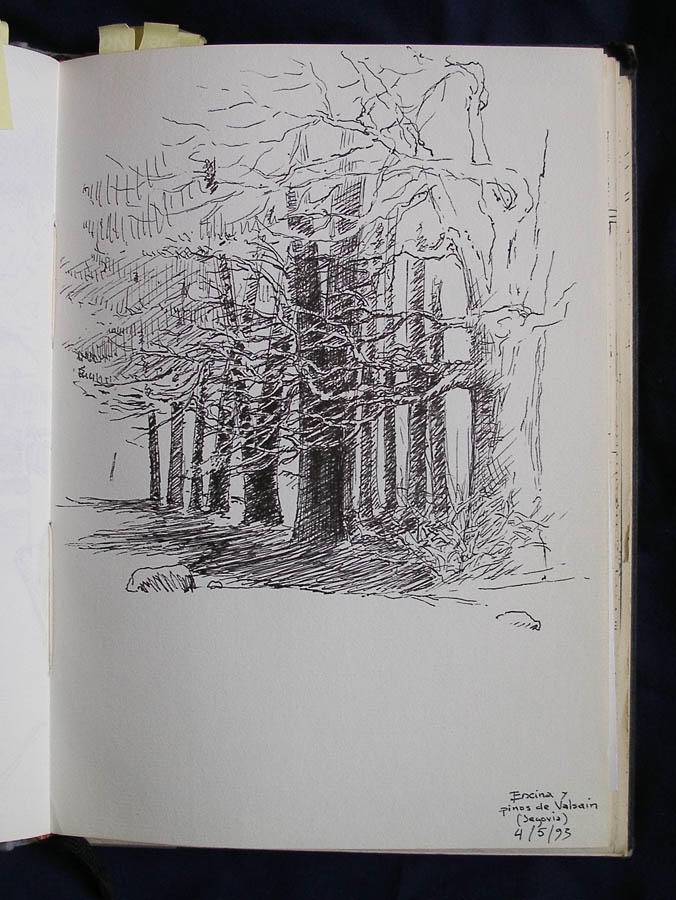 Luis Pita | Ink line drawing | Dibujo de línea a tinta | Cuaderno de Apuntes de Viajes | Travel Sketchbooks | Spain | Castilla | Trees on the mountain | oak and pine | encinas y pino | 002/ Pinos de Valsaín - Segovia (1993)