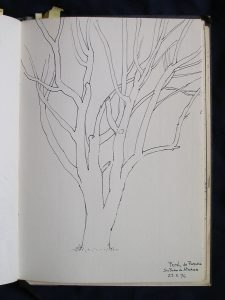 Luis Pita | Cuaderno de Apuntes de Viajes | Travel Sketchbooks | 006/ Peral en San Pedro de Atacama - Chile (1996)