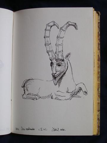 Luis Pita | Cuaderno de Apuntes de Viajes | Travel Sketchbooks | 014/ Bronce iraní representando a un Íbice, siglo V aC | - British Museum - London (1999) | Iranian Brass Ibex, V century BC | Ink line drawing | Dibujo de línea a tinta |