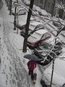 Luis Pita | Ciudades | Cities | (2009) | Hombre paseando perro bajo la gran nevada de enero 2009 | Man walking the dog under the big snow in january 2009 | Madrid