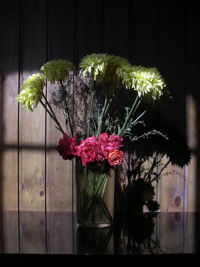 Luis Pita | Fotografía | Photography | Visiones interiores | Inner visions | flores-secas