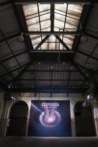 Luis Pita - Blog - Foto - Castro Prieto «Cespedosa» (2016) Expo en Madrid