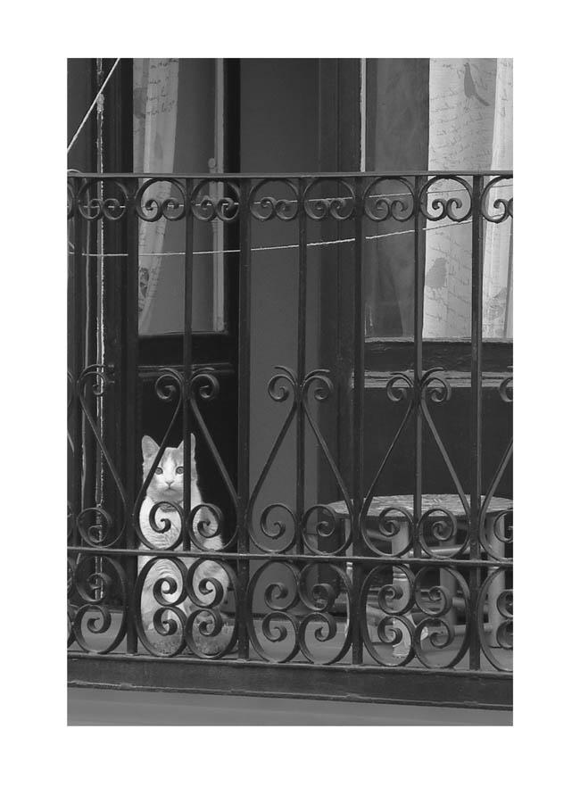 Luis Pita | Balcones (de Madrid) | Balconies | (2016) Balcones - 006