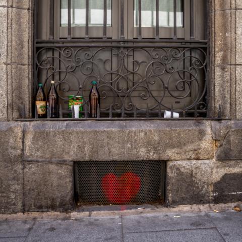 Luis Pita Moreno | Disecciones 008 | (2019)